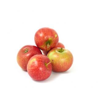 Äpfel Pausenäpfel klein