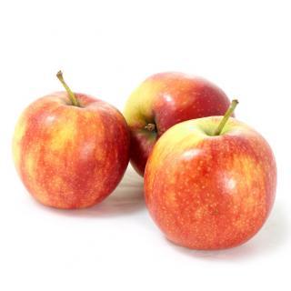 Äpfel Gala Royal