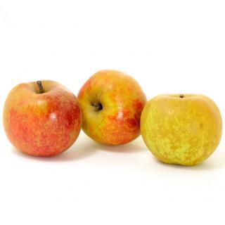 Äpfel Boskoop