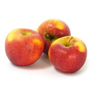 Äpfel Pilot