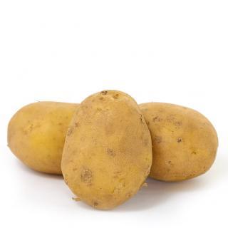 12,5kg Salat-Frühkartoffeln fk.