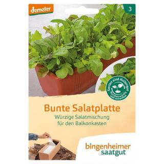 Bunte Salatplatte BIN