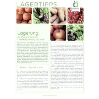 Info Lagertipps Obst und Gemüse